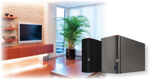 Home and Small Office NAS